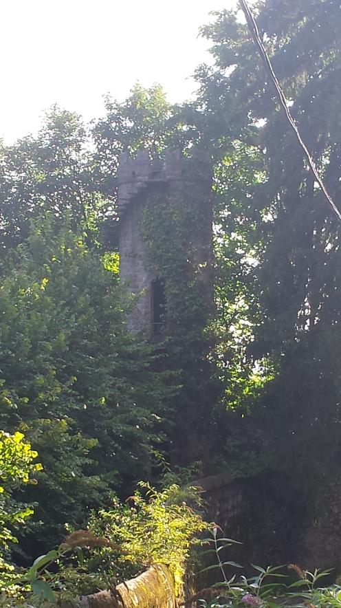 Torres em meio às árvores